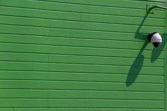 Wall green Royalty Free Stock Photo