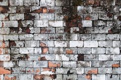 Wall grunge red brick paint white color background. Dirty,dust old wall red brick,backdrop texture and splash .white color or abst. Ract background royalty free stock photo