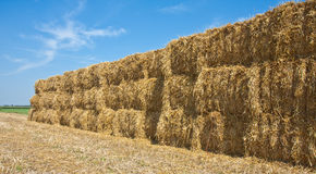 Wall of Hay. Huge wall of hay at the countryside of the Netherlands stock photo
