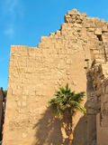 Wall with hieroglyphic reliefs at Karnak Stock Photography