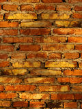 Wall   house  brick Stock Photography