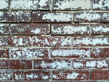 The wall of a house in the old part of the city! Stock Images