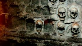 Wall of human skulls stock video footage