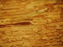 Wall insulation with foam plastic styrofoam Stock Image