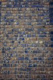 Wall of Ischtar Stock Photos
