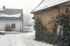 Wall with ivy in a winter village. Wall with ivy and road in a winter village Stock Image