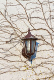 Wall Lamp Royalty Free Stock Image
