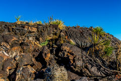 Wall of lava rock. Stock Image