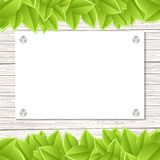 Wall with leaves Royalty Free Stock Images