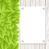 Wall with leaves Royalty Free Stock Photo
