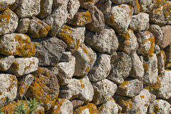 Wall and Lichen Royalty Free Stock Images