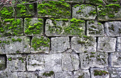 Wall of limestone Royalty Free Stock Photos
