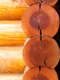 Wall of logs Royalty Free Stock Image