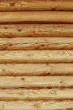 Wall of logs background Royalty Free Stock Images