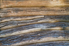 Wall from logs . Royalty Free Stock Photo