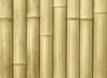 Wall made of bamboo planks Royalty Free Stock Photos