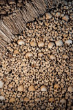 The wall made of human bones and skulls Stock Photo