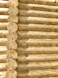 Wall made of logs Royalty Free Stock Photo