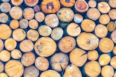 Wall made of logs Royalty Free Stock Photography
