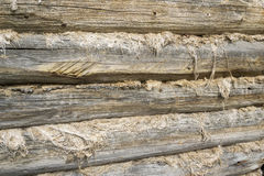 Wall made of logs. Texture: part of the old log wall Royalty Free Stock Photography