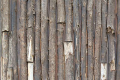 Wall made of logs. Wood texture Stock Images