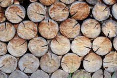 Wall made of stacked wood Stock Photo