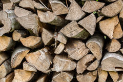 Wall made of stacked wood. Wall made of stacked nature wood in forrest Stock Photos