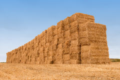 Wall of many balestraw stacked Royalty Free Stock Image