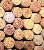 Wall of many different wine corks. Closeup of wine corks. Close up of cork wine. Stock Images
