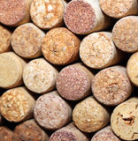 Wall of many different wine corks. Closeup of wine corks. Close up of cork wine. Royalty Free Stock Photos