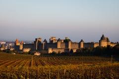 Wall medeltida ramparts för vingårdar chateautorn royaltyfri bild