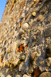 wall milan  in italy old   church sky  background  stone Royalty Free Stock Photo