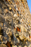 wall milan    italy old   church sky  background  stone Stock Photos