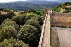 Wall of Montalcino Fortress and olive garden in Val d `Orcia, Tus stock images