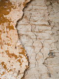 A wall with moody orange color. Royalty Free Stock Photo