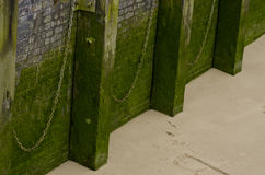 Wall and moss.Riverside wall with ropes, river Thames, London, Royalty Free Stock Image