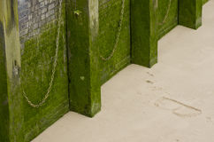 Wall and moss.Riverside wall with ropes, river Thames, London, Stock Photography