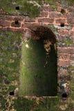 Mossy brick wall Royalty Free Stock Photos