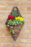 Wall mounted hanging basket with spring flowers Royalty Free Stock Photography