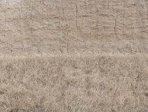 Wall of mud and grass texture background Stock Photos