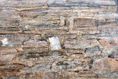 Wall of natural stone be Stock Images