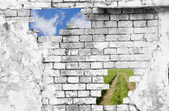 Wall and Nature Royalty Free Stock Photo