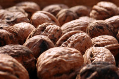 Wall nuts in a wooden box. Wall nuts still dirty of the ground Royalty Free Stock Photos