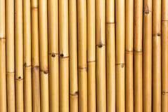Wall Of Bamboo Royalty Free Stock Photos