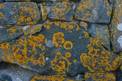 Wall Of Large Natural Stones. Stock Images