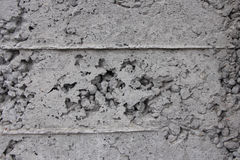 Wall. Old concrete wall in gray cracked Royalty Free Stock Images