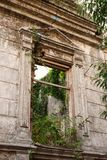 The wall of an old destroyed house, overgrown with bushes and gr royalty free stock image