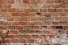 Wall 42 Royalty Free Stock Image