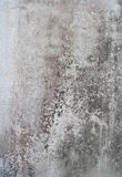 Wall old grungy texture dirty Royalty Free Stock Images