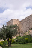 The wall of old Jerusalem Stock Photos
